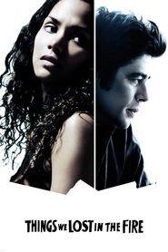 Things We Lost in the Fire - Pierderi dureroase (2007)
