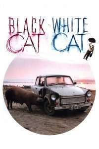 Crna macka, beli macor – Pisica albă, pisica neagră (1998)