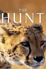 The Hunt (2015) – Miniserie TV